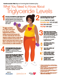 Triglyceride Infographic English